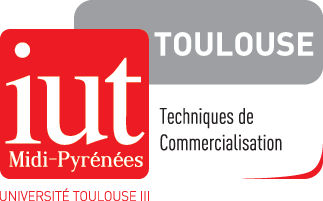 IUT Tech de Co Toulouse