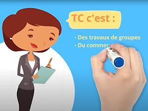Enquête : le devenir des étudiants TC Toulouse